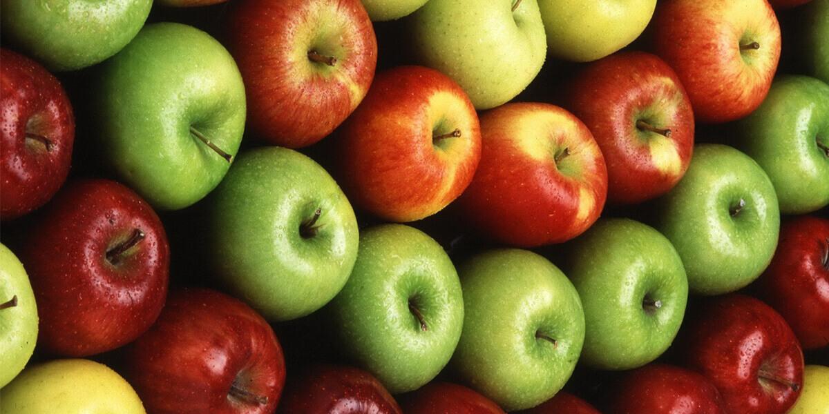 μήλα φρέσκα στην σειρά σε διαφορετικό χρώμα